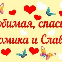 """Баннер на встречу двойняшек из роддома супруги """" Любимая, спасибо за двойню!"""" с сердечками и бабочками"""
